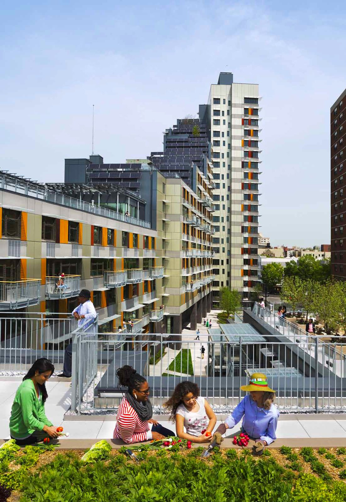 The outdoor space at Via Verde, a sustainable residential development in the South Bronx consists of a ground level courtyard spiraling upwards and completing itself on the top of a building. Incorporating a grove of evergreen trees, apple orchard, and garden plots for vegetables along the way, Lee Weintraub Landscape Architects created an inviting outdoor space for the building residents' to enjoy daily. Photo courtesy of Lee Weintraub Landscape Architecture.  New York Landscape Architects Design Awards by Sara Carpenter