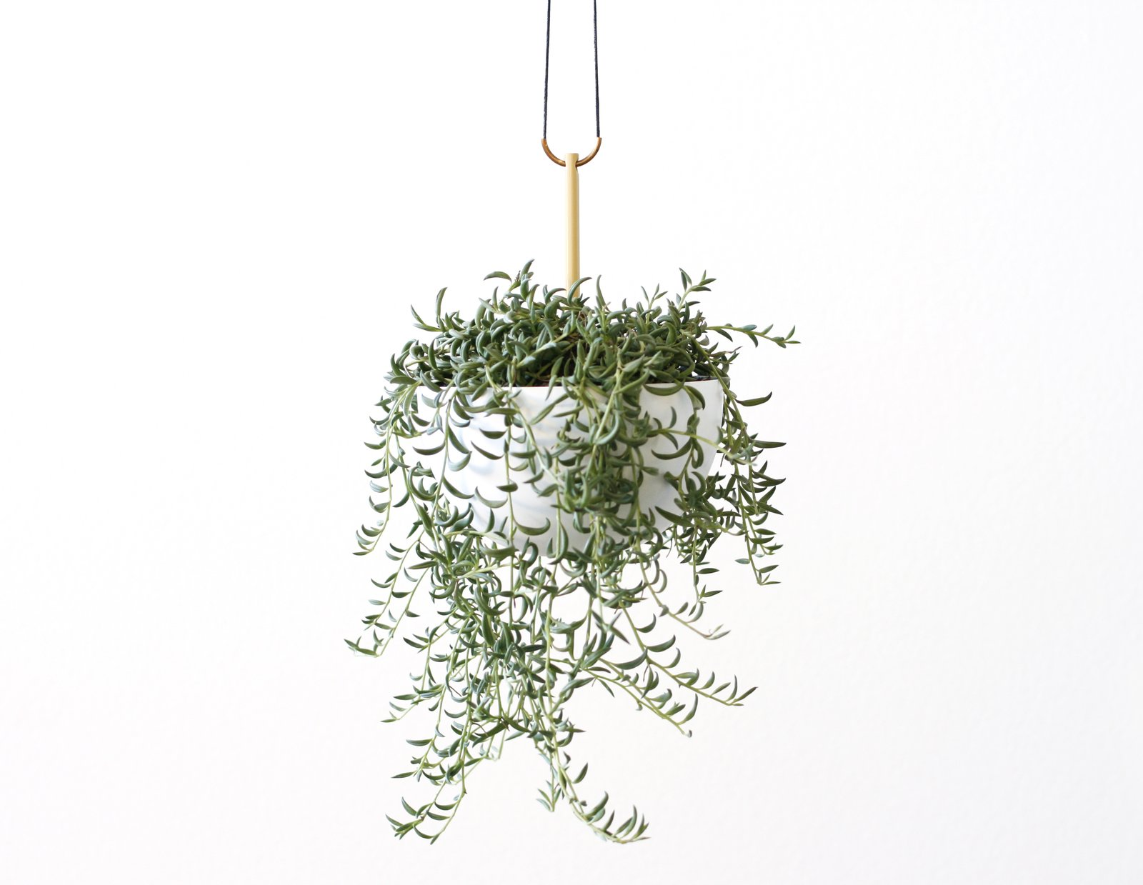 The Stem Hanging Planter presents an elegant play of materials. The planter is made from a spun aluminum bowl that rests on an interior stem—a steel rod that travels through the base of the bowl, through the plant's soil, and above the bowl where it hangs from a waxed black cotton cord. The result is a decidedly sculptural piece that carefully balances components to create an artful hanging planter.  Photo 4 of 11 in These 5 Interior Design Trends Will Reign Supreme in 2018 from Favorite Products from BKLYN Designs
