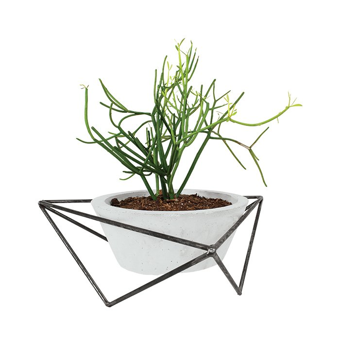 Texas  Tabletop planter by KKDW, $200 With her concrete planter nestled in a welded-steel frame, Austin-based designer Kelly DeWitt elevates humble materials. The rough-hewn finishes and industrial sensibility offer a striking juxtoposition against verdant and lush plants. kkdw.co  Must-Own Modern Home Accessories Made in America by Diana Budds
