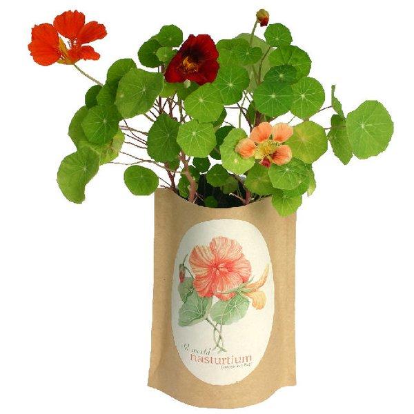 Indoor Gardening Kits & Tools