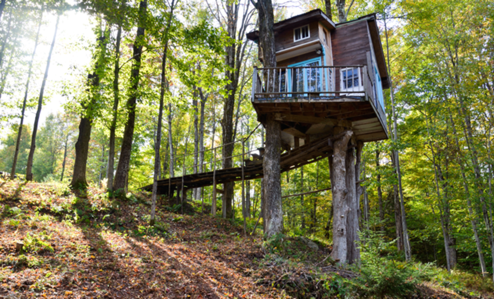 Treehouse, Vermont.  Photo 2 of 7 in Airbnb Comes Home Preview