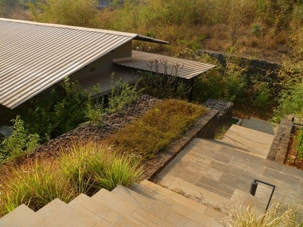 "Shillim Retreat, Maharashtra, India, 2012. Landscape design: Margie Ruddick. Architecture: Steven Harris Architects, Khanna Schultz, Writer Corporation. Photo: Khanna Schultz  Photo 3 of 5 in ""Born to Rewild"" with Landscape Designer Margie Ruddick"