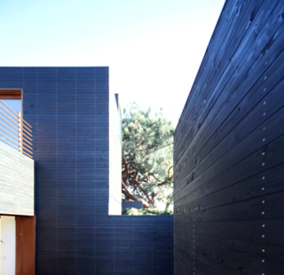 The striking black-cedar finish surrounds the bedroom courtyard of Dwell Home Venice.