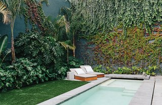 The rooftop courtyard is lined with a verdant mix of indigenous plants, including banana trees, palm trees, lion's claw, Mexican breadfruit, and native vines. The chaise longues were designed for Farca's EF Collection.