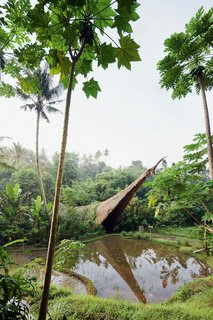 The Green School in Badung, Bali, Indonesia, by Effan Adhiwira, employs micro-hydro power, solar power, bio-diesel, and natural air conditioning; it was also constructed with 99% natural materials. Photo by Iwan Baan