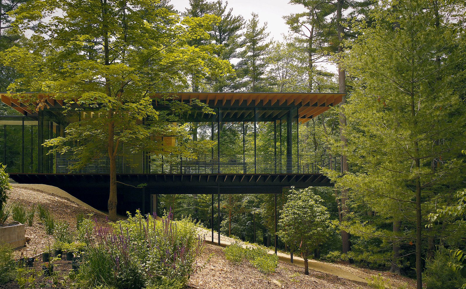 Kengo Kuma updated the mid-century Glass Wood House in New Canaan, Connecticut, while maintaining the home's integration with its natural surroundings. Photo by Kengo Kuma & Associates for Glass Wood House  Photo 5 of 8 in 100 Contemporary Green Buildings