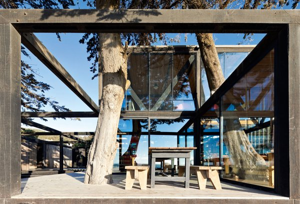 WMR Arquitectos didn't just build with wood – they incorporated trees on the grounds of the Surazo Hotel into the design. Matanzas, Chile. Photo by Sergio Pirrone.