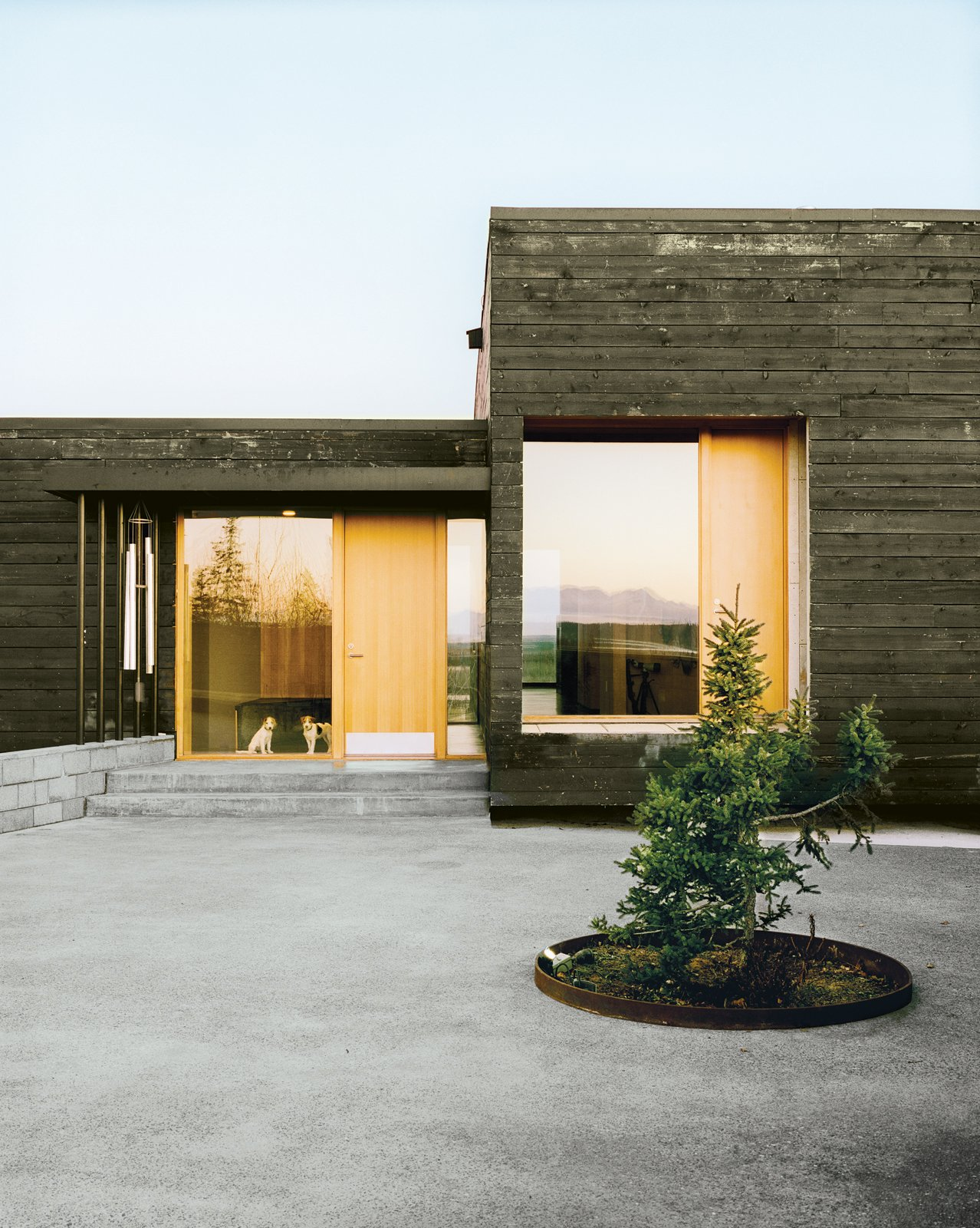 Exterior, House Building Type, and Wood Siding Material Parson Russell terriers Pepper and Trixie get a glimpse of the large courtyard through a glassy expanse by Marvin Windows and Doors.  Photos from This Modern Cabin Is the Ideal HQ For a Family in Alaska