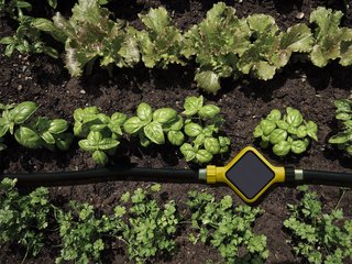 There have been other connected soil analyzers like the Koubachi or Parrot Flower Power, but the Edyn is special for marrying detailed soil analysis with an automatic irrigation system. The result is an optimized and well-informed garden that actually tends itself.