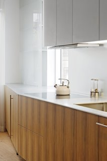 The countertop is a solid aluminum plate. The cooktop, hood, and dishwasher are Miele.