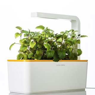 Click and Grow  Back-to-the-land types may decry the Click and Grow, a sleek Scandinavian-designed assemblage of microchips and NASA-inspired Smart Soil that can help grow plants and herbs indoors all year round. That's OK, though; when you're enjoying fresh basil or berries in the middle of the winter, they can go outside and try to forage some root vegetables.   Photo by Andres Keil