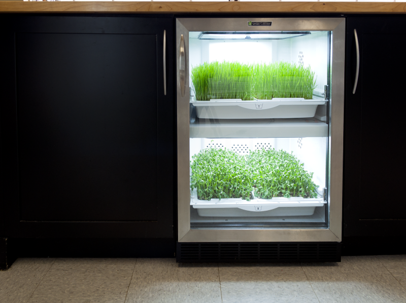 The Urban Cultivator is a dishwasher-sized micro-garden that appears to be a wine rack for plants. It is poised to slide into pre-existing kitchen designs, making it an easy way to add a drawer of fresh herbs to your home.