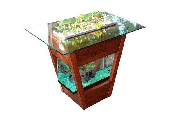 Green Towers Living Furniture  It's a clean, controlled circle of life that actually looks good in your living room. A fusion of aquaponics and hydroponics, the Living Table utilizes fish waste to organically fertilize plants, which in turn clean and filter the water. A group of Penn State students working in College Station, Pennsylvania, designed the table, which they plan to launch via Kickstarter on June 30th.