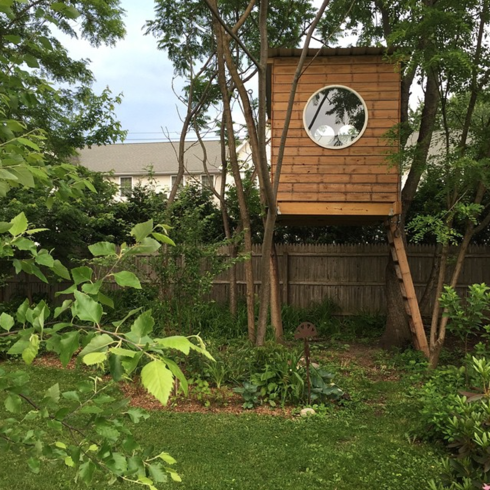 backyard tree house with circle picture window