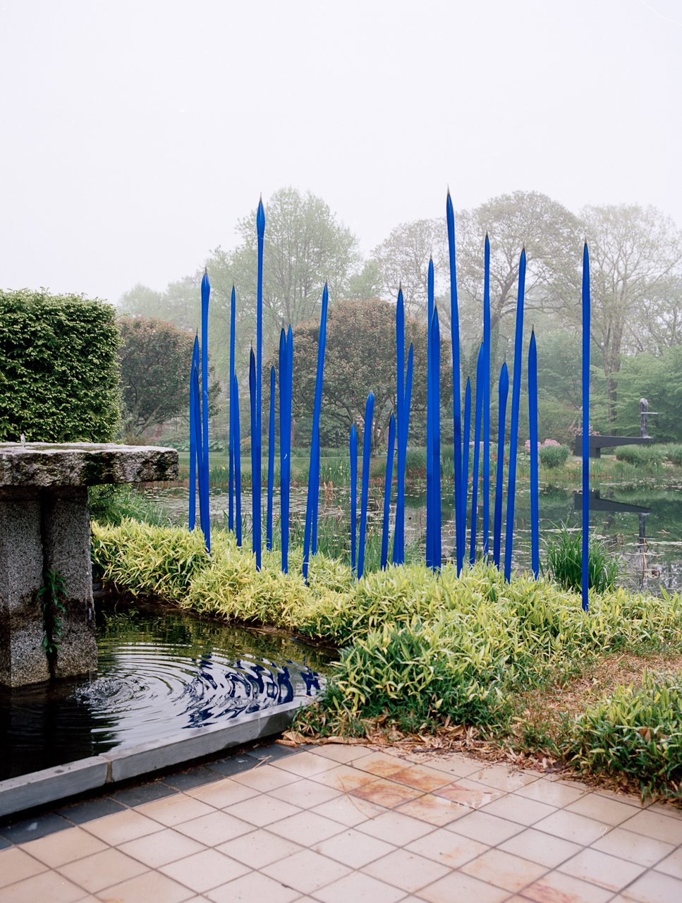 """Cobalt glass spears by Seattle artist Dale Chihuly reside in the pond beside the main house. Larsen is both friend and patron to Chihuly, and the two were introduced when the latter was studying interior architecture and weaving. Larsen recalls in his memoir, """"When we met, [Chihuly] was heating strips of glass sufficiently to bend them over and under to form an interlaced plane. I suggested he learn glassblowing with Harvey Littleton, the father of modern glass, who had been a prolific potter when I was at Cranbrook."""" Chihuly then went to Madison, Wisconsin, to study under Littleton, and he then started a school in the Northwest with $2,000 in prize money—now Pilchuck Glass School.  Photo 11 of 12 in Q&A with Textile Designer Jack Lenor Larsen"""