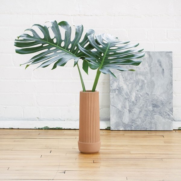 Umbra Shift's Pleated series was designed by MSDS as a way to accompany a plant through different growth stages. Each member of the Pleated earthenware collection is handmade and features geometric pleats that help highlight the contents of the piece. This tall vase can be used on a floor or tabletop and is best for displaying long-stemmed flowers, grasses, or ferns.   Also available in Low Dish and Self-Watering Planter.