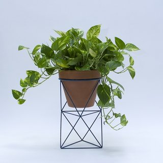 The Double Octahedron Ring Planter from Eric Trine is a geometric accent made of powder-coated steel. The planter instantly sophisticates a standard ten-inch terracotta pot by adding visual interest to the exterior, raising the pot upward, and giving the plant a new footprint. This product launched at Dwell on Design Los Angeles in May 2015.