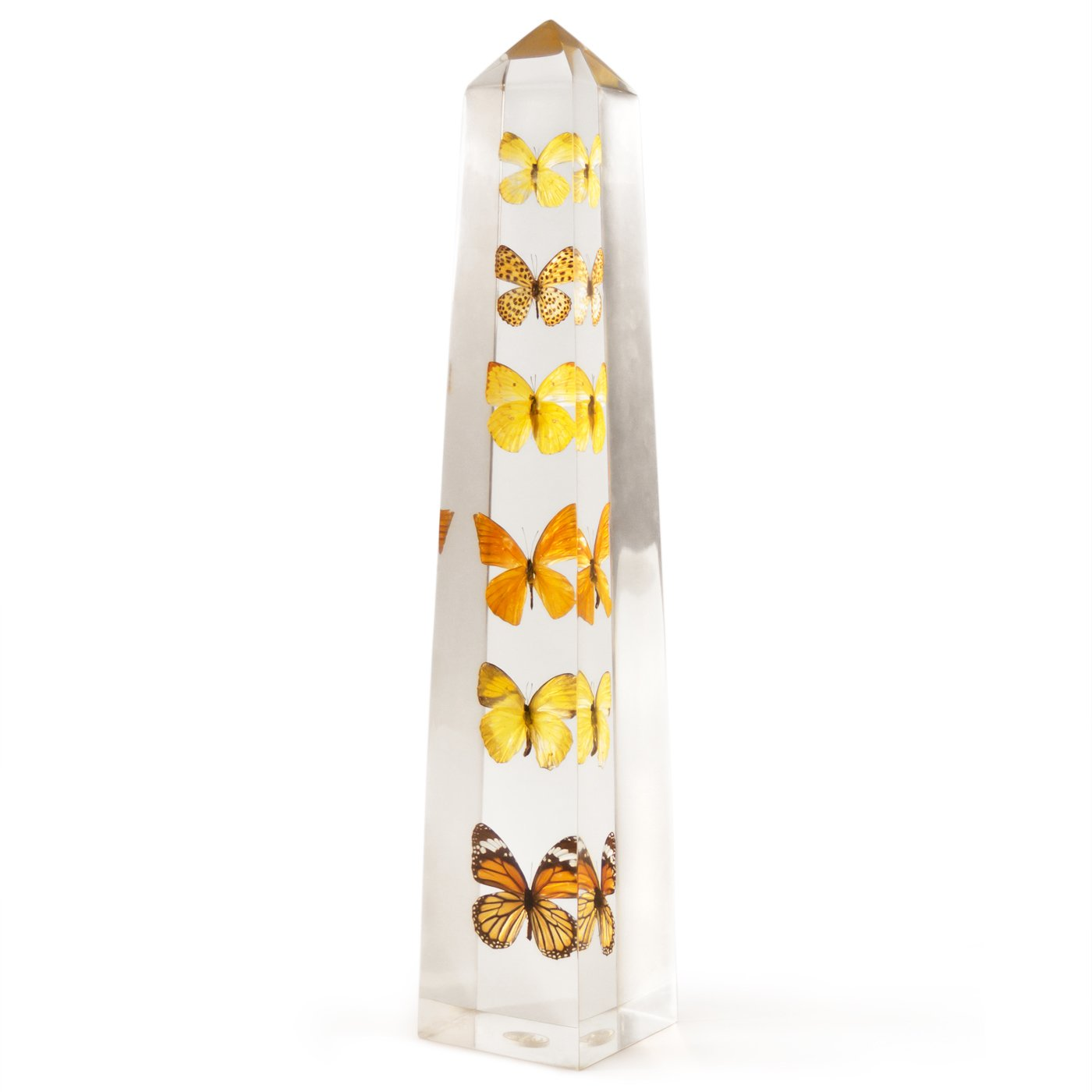 The Lucite Butterfly Obelisk is a unique home accent allowing a view of various butterflies from all angles.  Photo 6 of 9 in Creativity and Constraint: A City Modern Preview