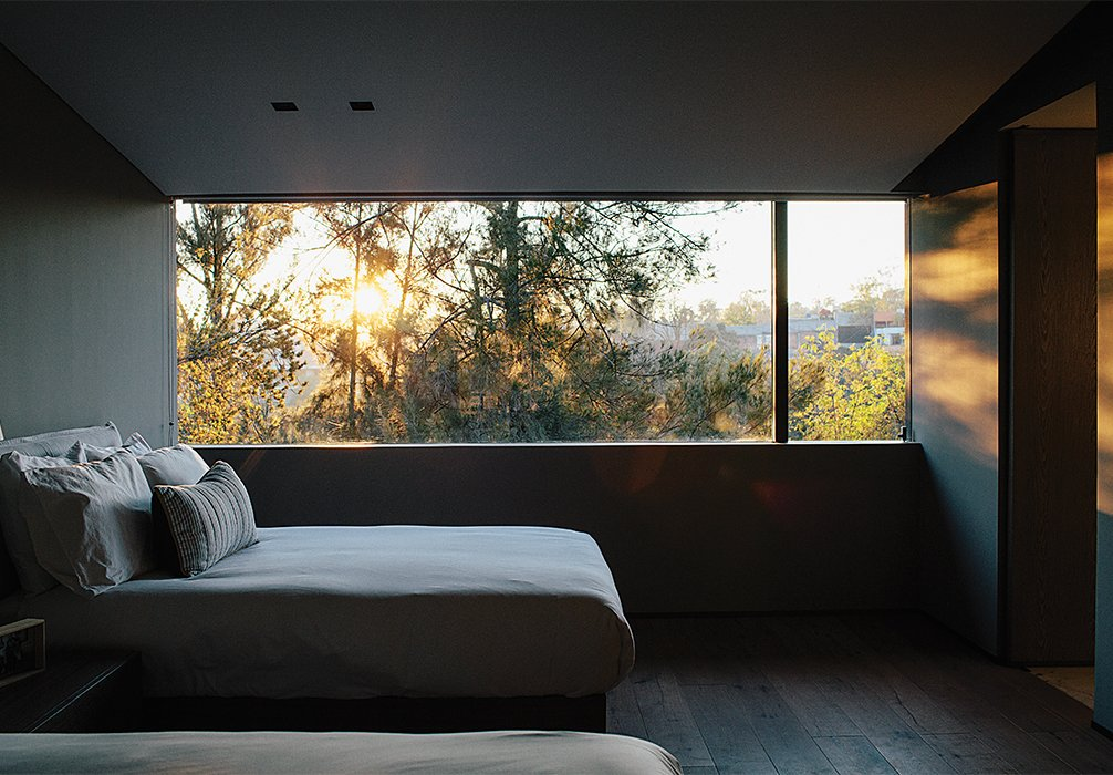 Bedroom and Bed A window in another bedroom overlooks protected woodland.  Photo 13 of 15 in A Lush Retreat With a Sheltered Rooftop Pool in Mexico City