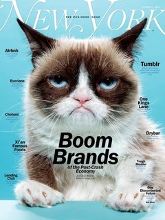 "Anna: NYMAG's Grumpy Cat Cover  New York Magazine's Oct. 7th cover, photographed by Jeff Minton, was the best thing to hit my mailbox in a long long time. The cover story is about the latest brands who have made it HUGE, all of a sudden making 1 billion dollars and the CEO is like 26 years old. Grumpy Cat was the perfect icon to represent today's ""Boom Brands."""