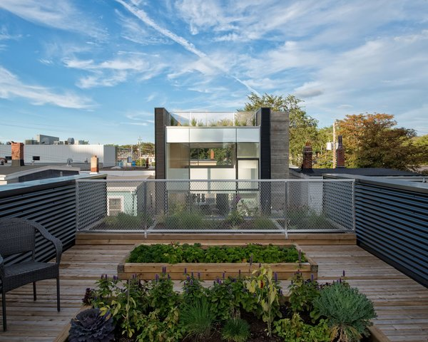 "On the lower roof, cedar decking and flower beds define one of several outdoor gardening spaces. Part of her ongoing research into the livability of cities, Fitzgerald aimed to create landscaped areas that were ""aesthetic, aromatic, educational, and productive."" The deck is bordered by an expanded aluminum mesh railing and black metal corrugated panels."