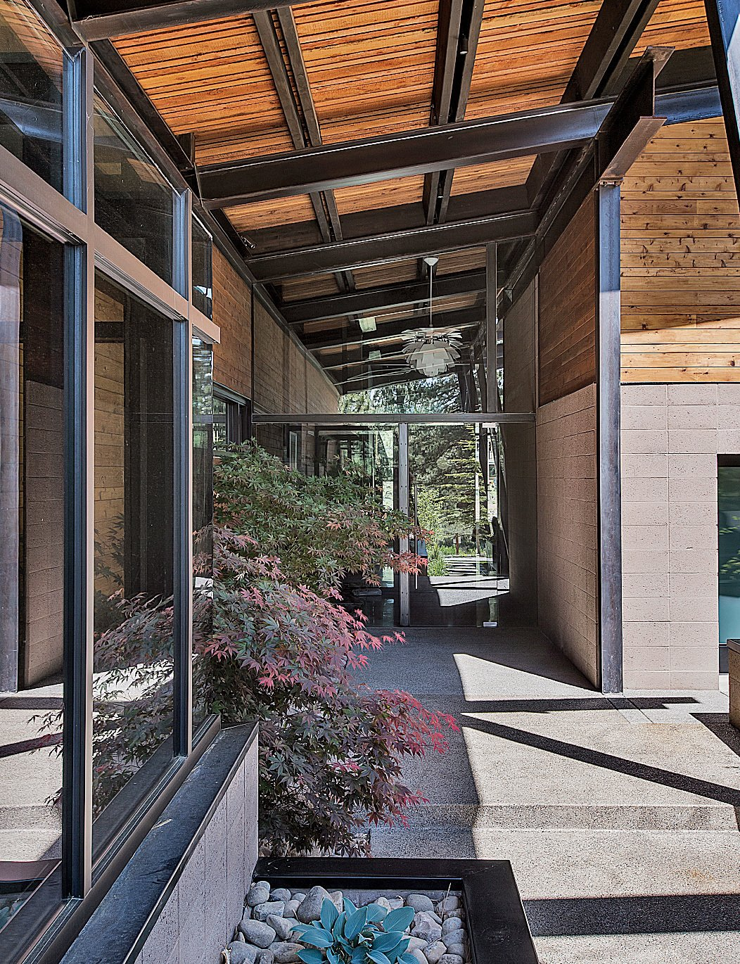 Outdoor, Walkways, Concrete Patio, Porch, Deck, Hardscapes, and Front Yard The entrance introduces the home's main materials: steel, glass, wood, and concrete.  Photo 4 of 19 in A Forest Sanctuary Designed to Support Autistic Triplets, Their Parents, and a Host of Caregivers