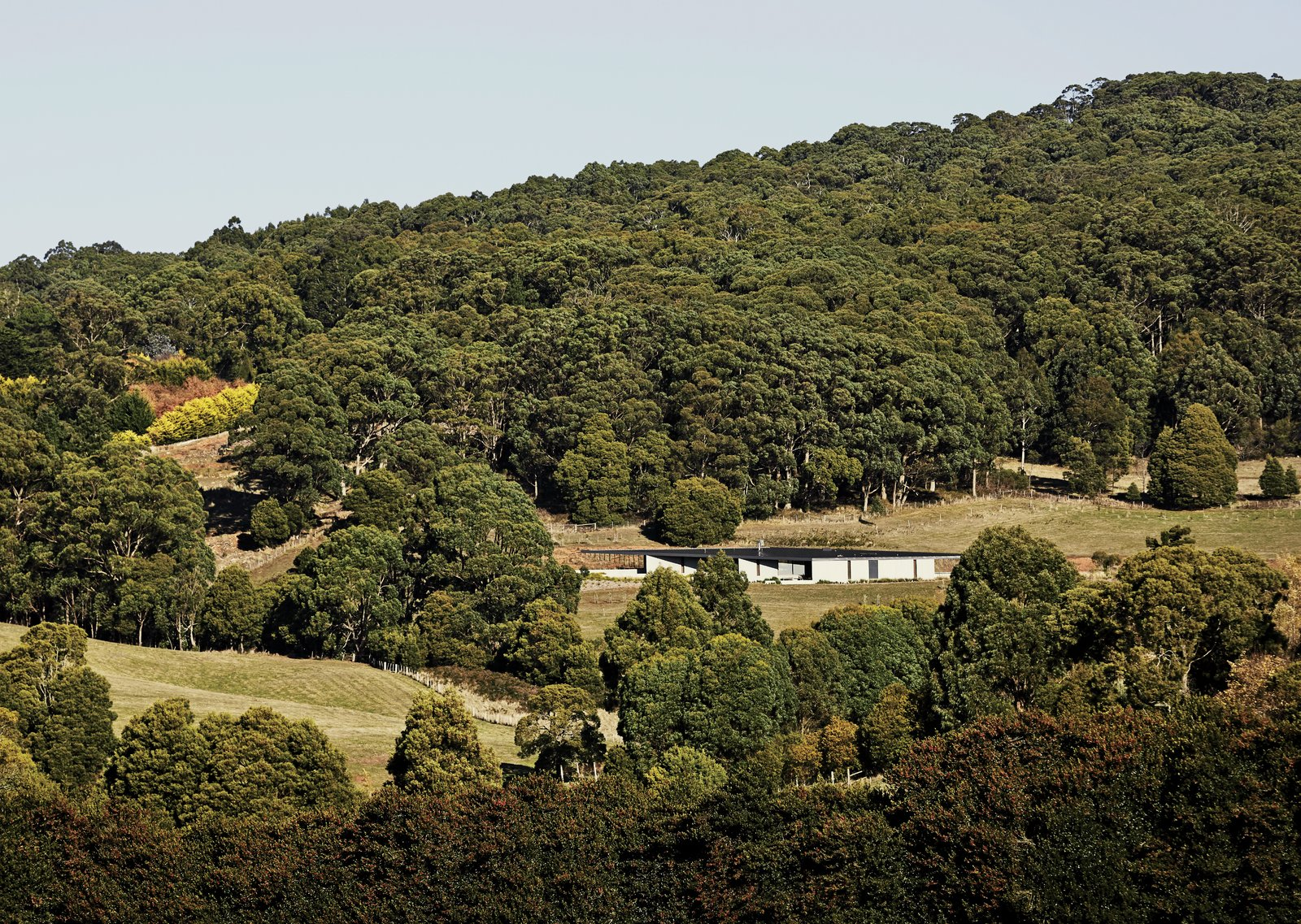 Outdoor and Woodland Architect Kerstin Thompson designed the low-slung structure to follow the sloping site. A steel roof and Thermomass precast concrete panels protect the house in the fire-prone bush.  Photo 4 of 10 in A Richly Furnished Home Frames Striking Landscape Views