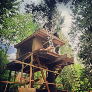 "@nelsontreehouse: ""We spy a treehouse with some Japanese flair. Could it be a teahouse?"""