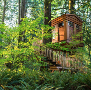 "@best_treehouses: ""This is the 'bonbibi' treehouse which is one of the 9 treehouses of TreeHouse Point. They are in Washington state and available to rent out as hotels!"""