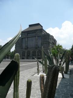 City Guide: 10 Places to Visit in Mexico City