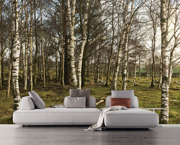 Nature, the latest large-scale wall covering in a collection by photographers Tom Haga and Lena Johnsen, whisks visitors to an idyllic Norwegian forest. The Flex modular sofa system, another new offering from Resource Furniture, can be easily re-arranged and transformed into a freestanding bed.