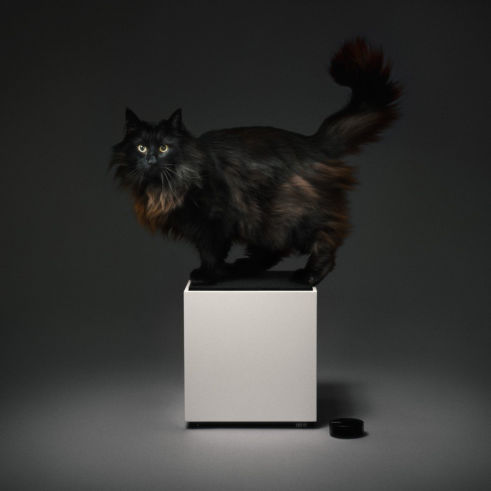Here, Teenage Engineering's masterful take on the Carlsson Loudspeaker shows off its sleek white cabinet and black grille. The optional Ortho Remote is also shown. Unfortunately, the cat is not included.  Sound Style from A Classic 1970s Speaker Gets New Life for a Modern Audience