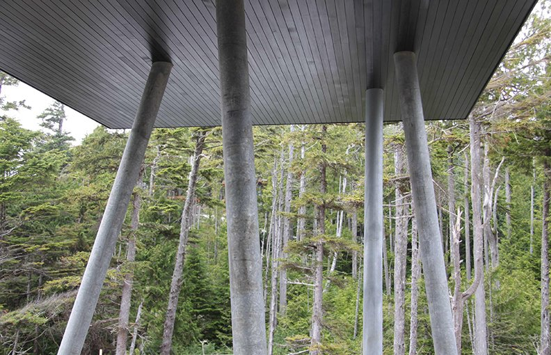 Where the floating outbuilding meets a grove of silver cedar, galvanized steel columns match the trunks.  Prefab from A Giant, 20-Module Prefab Perched Across a Coastal Site in British Columbia