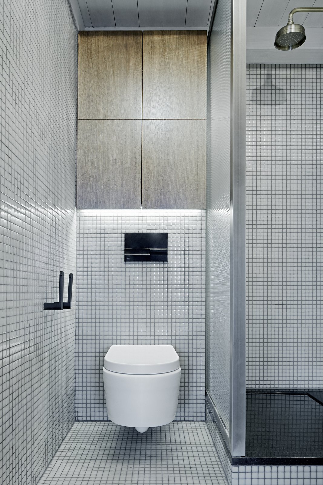 The tiles are also from Hisbalit, though green-grey and rectangular. The shower tap is from Omnires.  Master Bath from A Sleek Kitchen and Double Bathroom Renovation in Prague