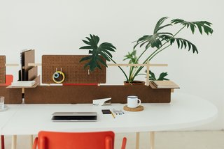 Design studio the Andes House saw potential for an office system in an unlikely material. Cholguán, a natural, lightweight composite wood board that's commonly found in industrial packaging and backing for furniture, has been manufactured by the Chilean forestry company Arauco for over 50 years.