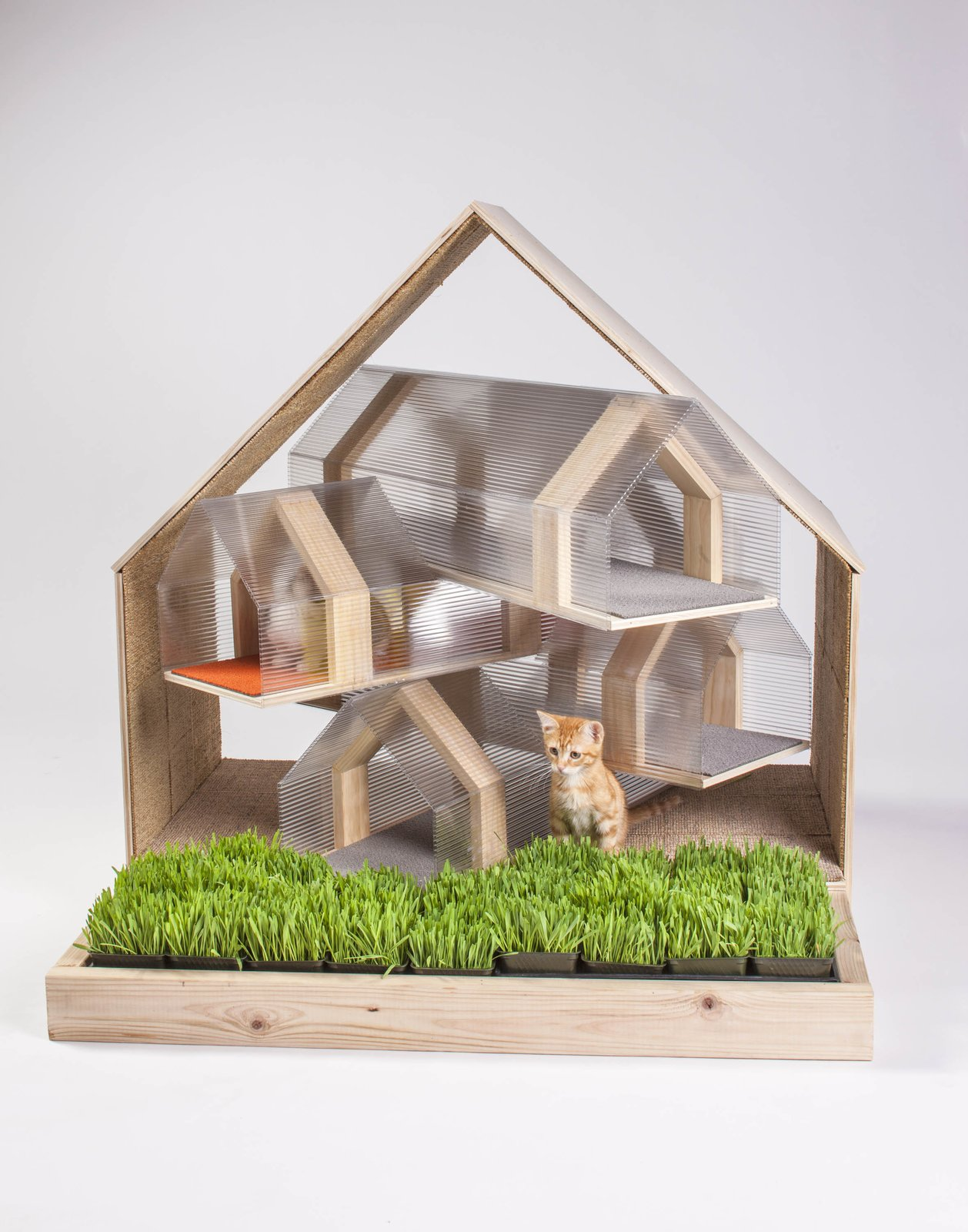 The pentagonal profile that is a recurring motif in HOK's cat shelter references traditional housing shapes. The idea was to create a design that could be replicated and built with a kit-of-parts-style of assembly.  Photo 19 of 21 in 21 Cats Living in the Modern World