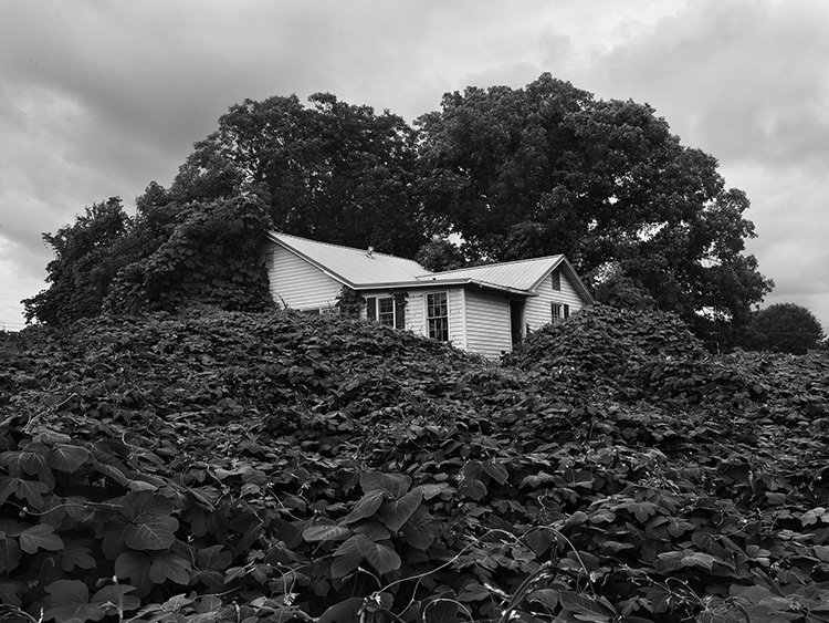 Alec Soth, Near Gainesville, Georgia, archival pigment print, 2014. Commissioned by the SCAD Museum of Art.  In Alec Soth's photographic exploration of the United States, architecture contributes to his narrative about the nation.  Photo 5 of 8 in When Art and Architecture Meet, the Results Can Be Wild