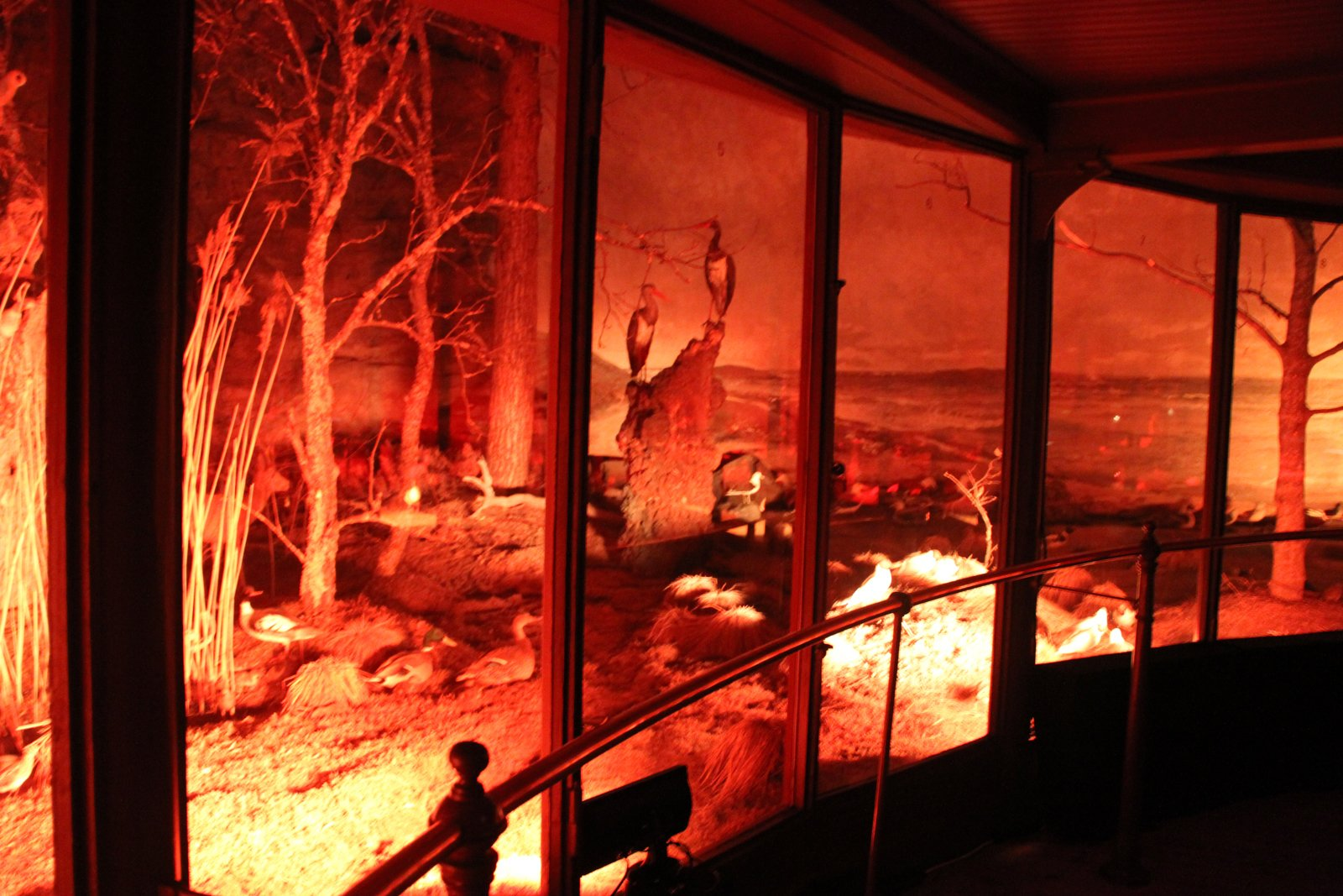 "One of the most talked-about events was the temporary, invitation-only exhibit 20 Designers at Biologiska, at the Biologika Museet (Biological Museum). Located inside a circa-1893 structure on Djurgården, the museum is basically a two-story cylindrical diorama that holds a collection of stuffed wildlife. Curated by Fredrik Färg, Emma Marga Blanche and Hanna Nova Beatrice, the exhibition is ""about evolution, diversity, and universality, where contemporary design, art and light is housed in an unexpected context.""  Search ""영동키스의민족스케줄춘천출장만남(TALK:za32)24시간 상담가능 합니다"" from Stockholm Design Week 2011"