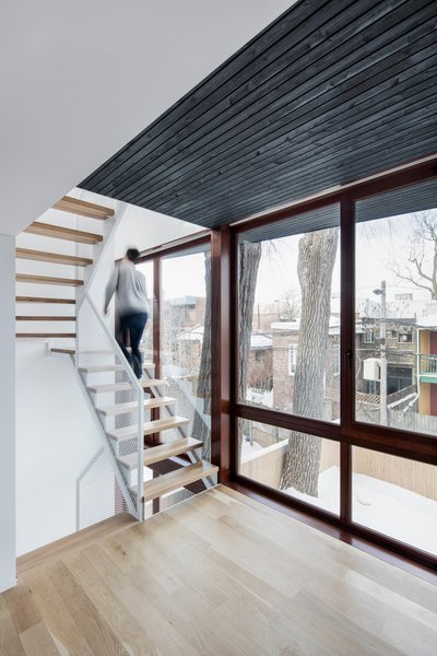 The addition creates a narrow intermediary space between the yard and existing home. This sliver contains a staircase and two new sun rooms.