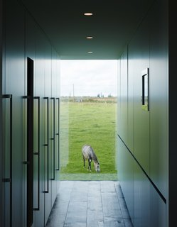 Discreet kitchen storage, which conceals the refrigerator, a wine cooler, the freezer, recycling, and cleaning materials, complements a view of one of the family's five horses.