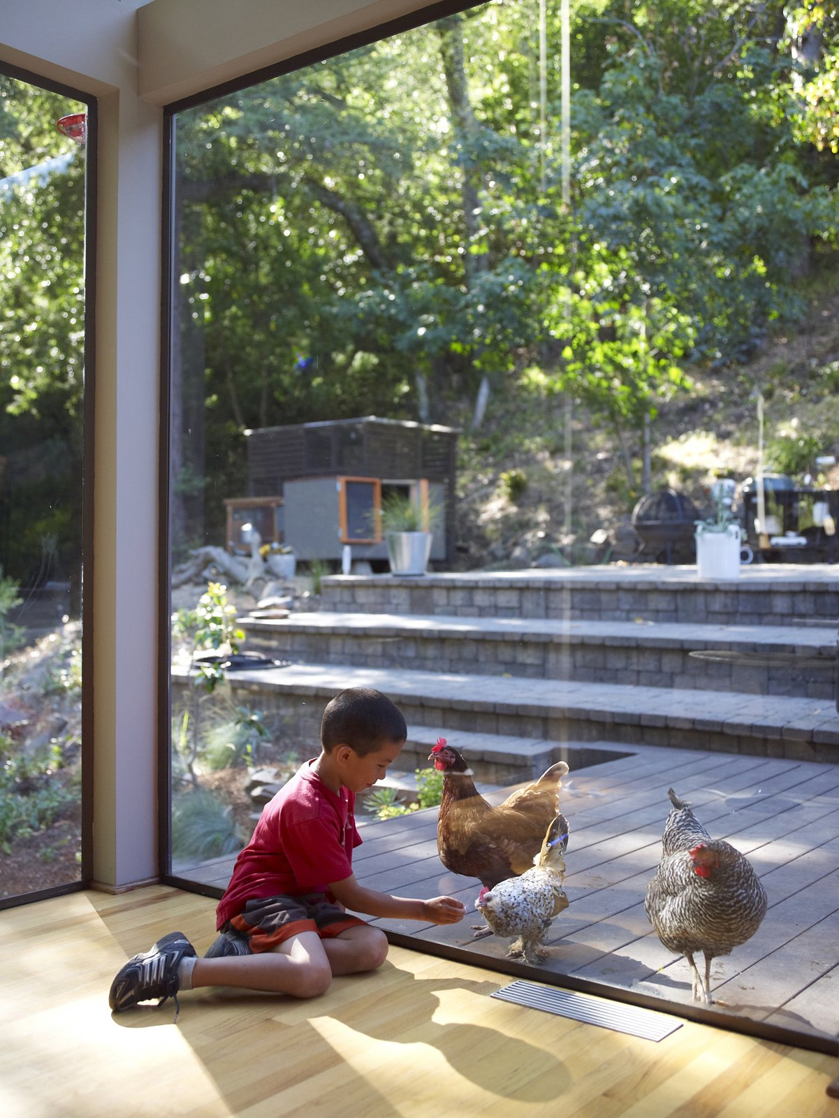 Outdoor Chicken under glass? Apolo will settle for eggs for breakfast.  Photo 18 of 20 in You Don't Have to Just Be at Your Desk When Working from Home