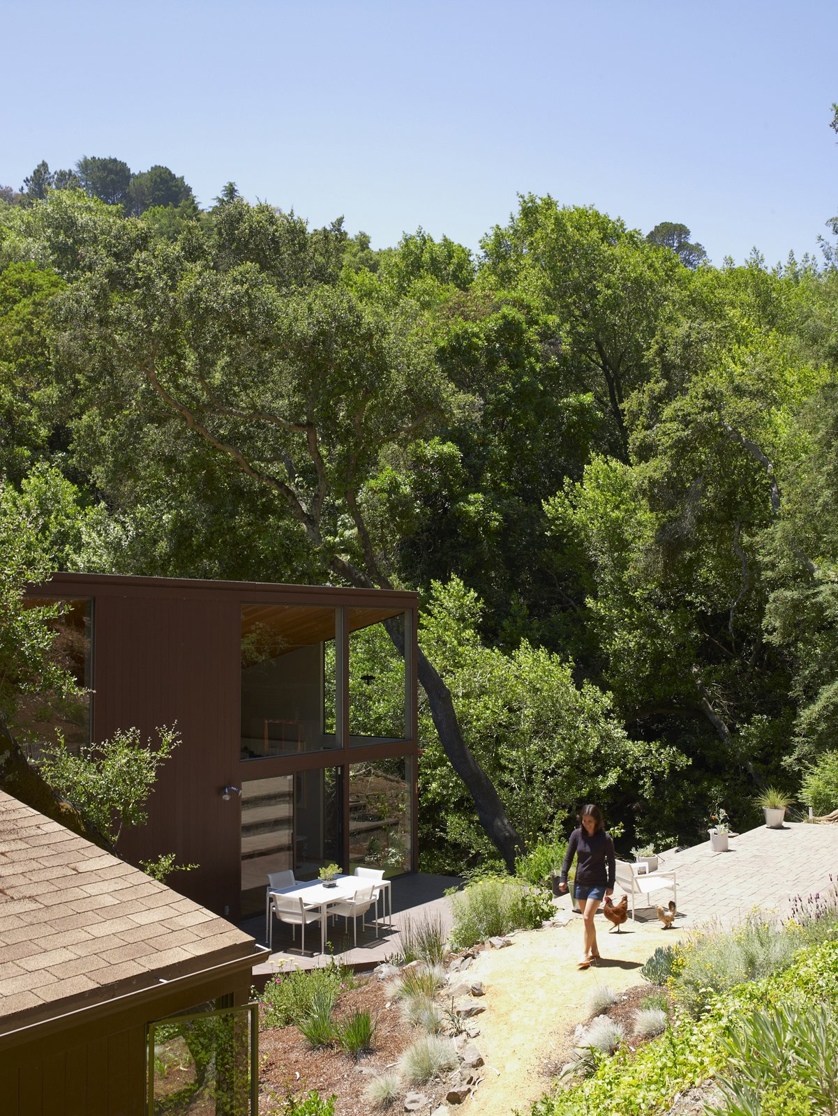 Outdoor and Walkways There's little concern about privacy considering the canopy of trees that surrounds the house. Alexander, and the chickens, take advantage of their sunny Northern Californian clime.  Photo 20 of 20 in You Don't Have to Just Be at Your Desk When Working from Home