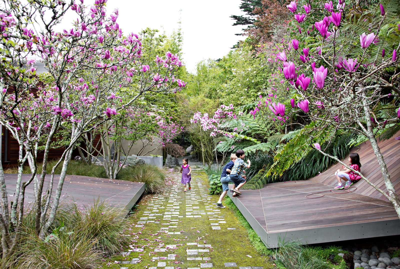 Outdoor, Back Yard, Front Yard, Side Yard, Trees, Walkways, Grass, and Hardscapes Faceted forms clad in ipe slats provide an unexpected theater for fun in Tiburon, California. The landscape, by James Lord and Roderick Wyllie of Surfacedesign, was created for a family with young children. A walkway of pavers arranged in braille spells out a poem by Christopher Marlowe; this element was conceived by local landscape architect Topher Delaney.  Photo 2 of 11 in This Endless Playscape Is Complete with a Bamboo Forest and Trampoline