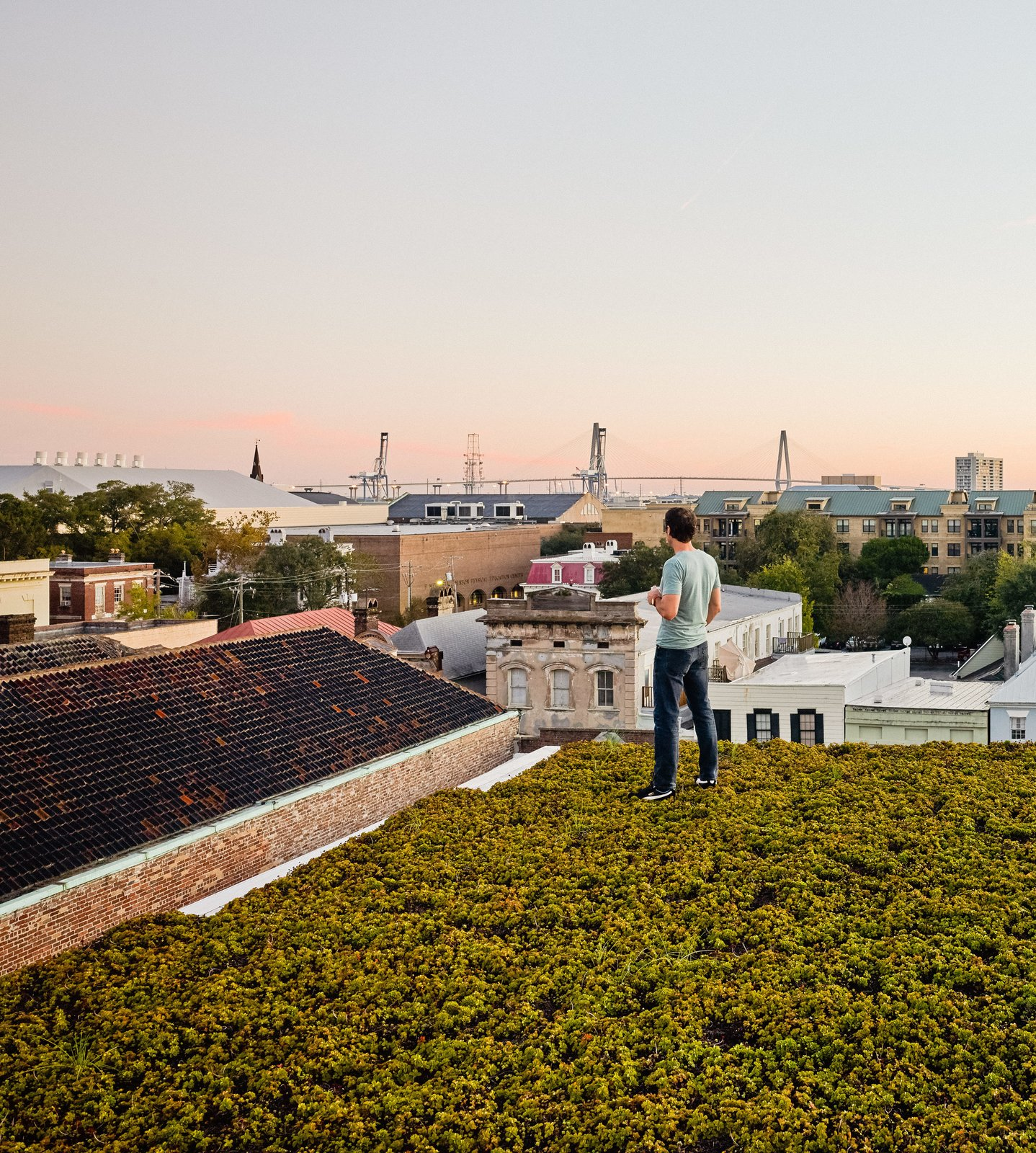 Outdoor and Rooftop Twenty species of drought-resistant succulents, punctuated by solar panels, carpet the top of the home. Green Roof Outfitters installed the plants in modules.  Photo 5 of 7 in High Above Traditional Charleston, a Modern Home Finds its Roost