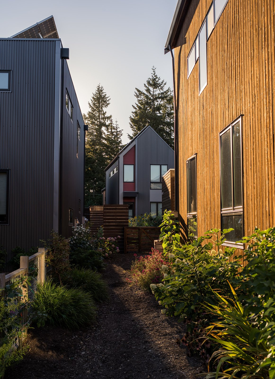 """Exterior and House Building Type Each """"micro-hood"""" consists of six to eight houses around common outdoor spaces. Davis was careful to design for privacy: Large windows face south and small ones point north to avoid big expanses of facing glass.  Photo 11 of 15 in It Takes a Village"""