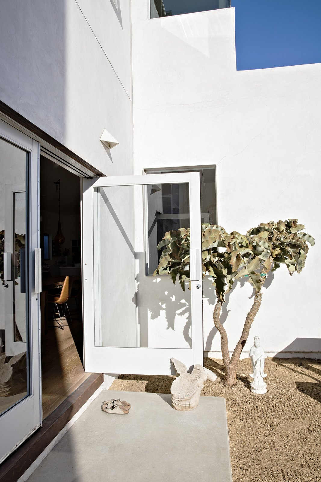 """Outdoor, Back Yard, Front Yard, Side Yard, Trees, and Gardens Doors recycled from an East Los Angeles grocery store lead to the backyard, which is populated with """"stark and minimal"""" plantings, says Siegal, like the Velvet Elephant Ear.  Photo 4 of 14 in Such Great Heights"""