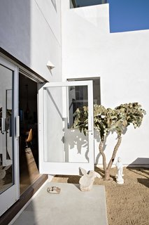 """Doors recycled from an East Los Angeles grocery store lead to the backyard, which is populated with """"stark and minimal"""" plantings, says Siegal, like the Velvet Elephant Ear."""