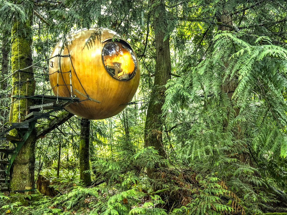 "Exterior, Curved, Treehouse, and Dome Inspired by the principle of Biomimicry, Free Spirit Spheres' goal is to ""create new ways of living that are well-adapted to life on earth over the long haul."" Based outside of Vancouver, the company specializes in tiny spherical tree houses that are works of art. You can even book an escape to spend the night in one at their forest hotels!  Best Exterior Dome Treehouse Photos from 10 Surreal Tree Houses That Will Make Your Childhood Dreams Come True"