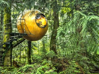 "Inspired by the principle of Biomimicry, Free Spirit Spheres' goal is to ""create new ways of living that are well-adapted to life on earth over the long haul."" Based outside of Vancouver, the company specializes in tiny spherical tree houses that are works of art. You can even book an escape to spend the night in one at their forest hotels!"