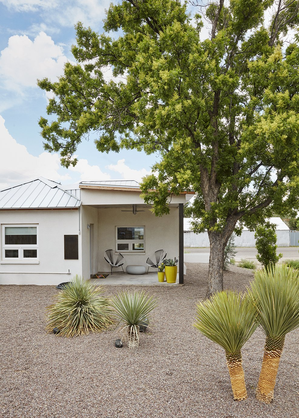 Outdoor, Back Yard, Trees, and Shrubs Surrounded by plants from yucca grower Hoven Riley, the casita's porch shelters planters from Brown Dog Gardens and two Acapulco chairs.  Best Photos from Smaller in Texas
